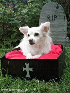 Sew DoggyStyle: Halloween DIY Dog Bed Coffin