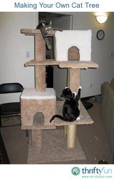 Cat tree guide