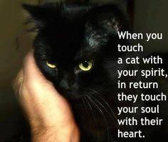 Touch a Soul