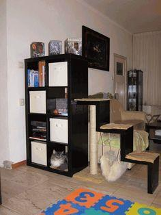 Bookcase with scratching post