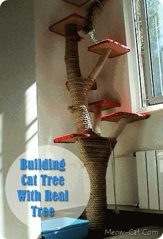 Build a cat tree or scratching post with ideas from for Build your own cat scratch tower