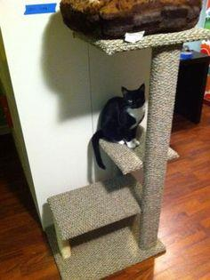 Build A Cat Tree Or Scratching Post With Ideas From