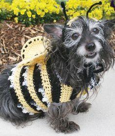 Dog's Crochet Bumble Bee Costume pattern