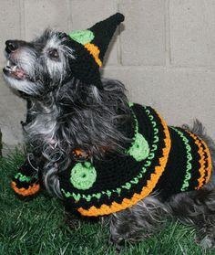 Dog's Crochet Witch Costume pattern