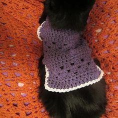 Kitty Cat or Small Dog Crochet Sweater