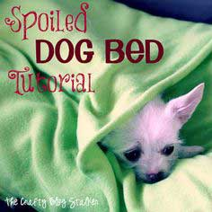 Spoiled Dog Bed Tutorial