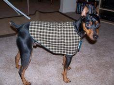 Tutorial for a dog coat - you need to scroll down for the pattern