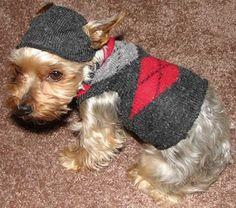 How To Make A Dog Sweater From A Sock