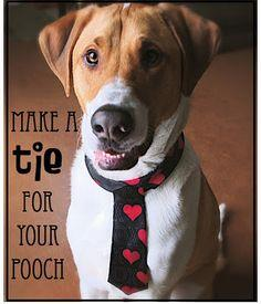 Make a Tie For Your Pooch