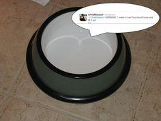 Tweeting Pet Bowl tutorial