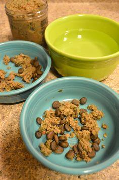 homemade wet dog food recipe