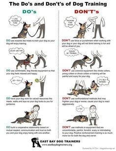 Do's and Don't's of Dog Training