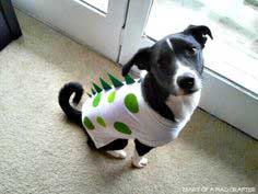 DIY Dog Dinosaur T-shirt