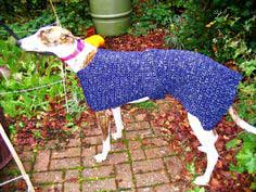 Crocheted Greyhound Coat#howto #tutorial