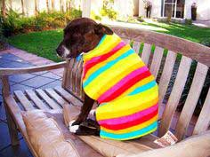 Dog Coat #howto #tutorial