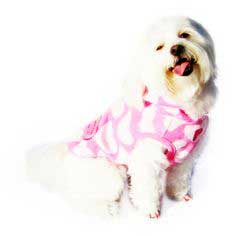 Clothes For Dogs #howto#tutorial