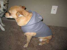 Dog Fleece Hoodie #howto#tutorial