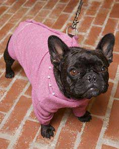 Embellished Wool Doggie Sweater Dress- A Tutorial