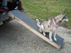 Build A Dog Ramp Steps Or Stairs With Ideas From