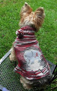 'Pup Squad' Dog Sweater