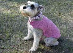 free pattern for dog sweater