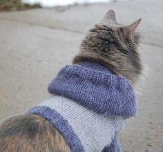 Knit Cat or small dog Hoodie pattern