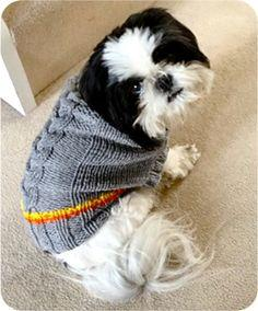 Braid Cable Dog Jumper