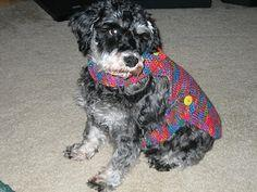 Garter Stitch Dog Coat for Small Dogs