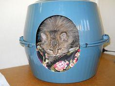 Bowl Pet House